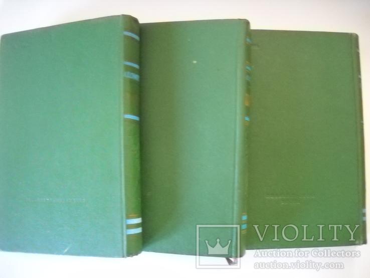 Помология-3тома-1962г., фото №7