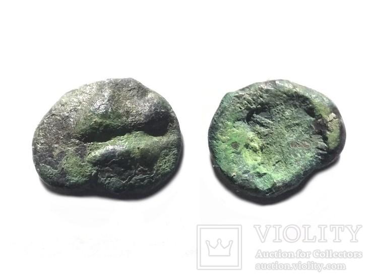 Монеты Боспорского Царства, фото №4