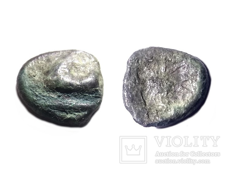 Монеты Боспорского Царства, фото №5