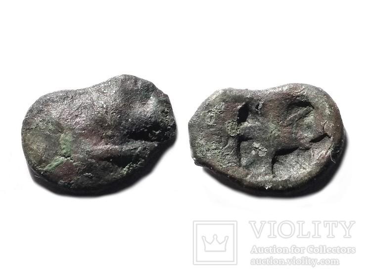 Монеты Боспорского Царства, фото №8