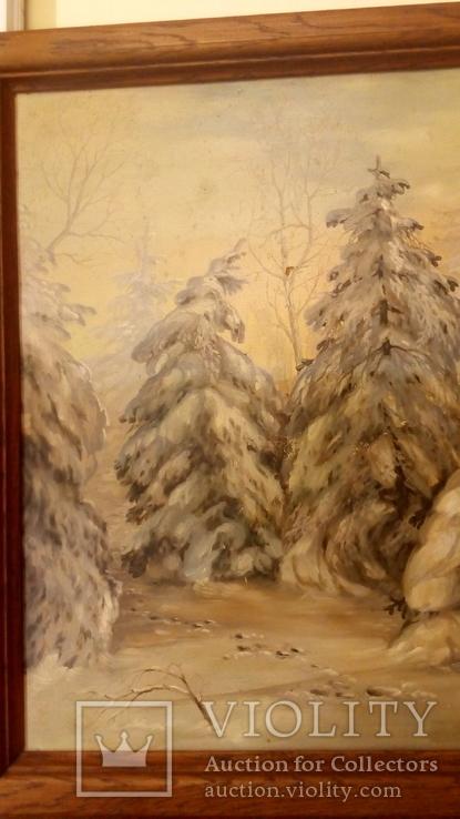 Зима., фото №10