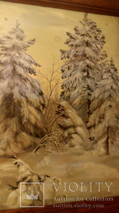 Зима., фото №12