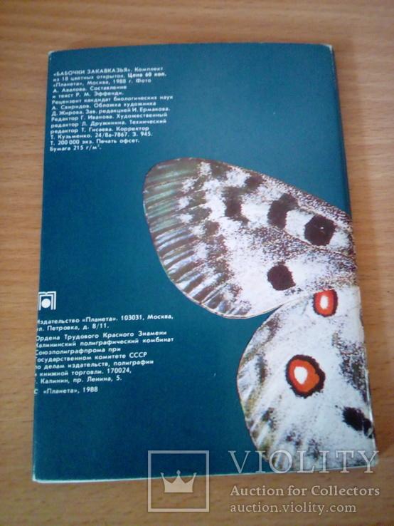 Бабочки Закавказья, набор 18 открю, изд. Планета 1988г, фото №3