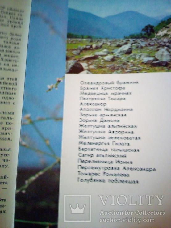 Бабочки Закавказья, набор 18 открю, изд. Планета 1988г, фото №6