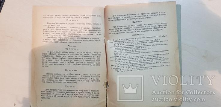 Городское козоводство 1937 год. тираж 3 тыс., фото №8