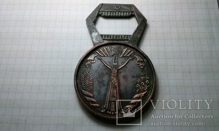 Сувенирная открывалка.Удмуртская АССР. 60 лет., фото №3