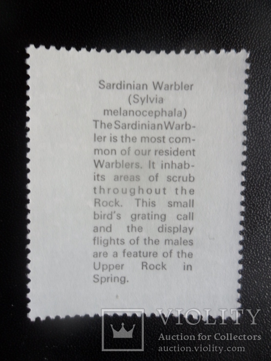 Фауна. Птицы. Брит. Гибралтар. 1977 г. текст на обороте, фото №3