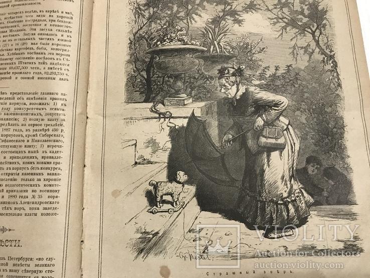 1884 Еврейская хроника, без цензуры Лучь, фото №2