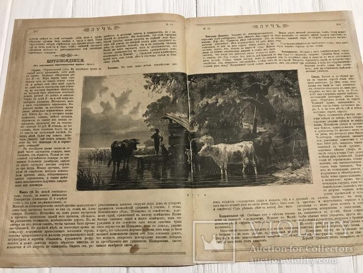 1884 Еврейская хроника, без цензуры Лучь, фото №9