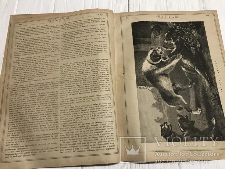 1884 Городское самоуправление, Выборы мировых судей, без цензуры Лучь, фото №7