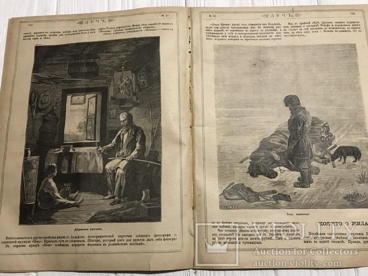 1884 Сведения о занятиях евреев, Без цензуры Лучь