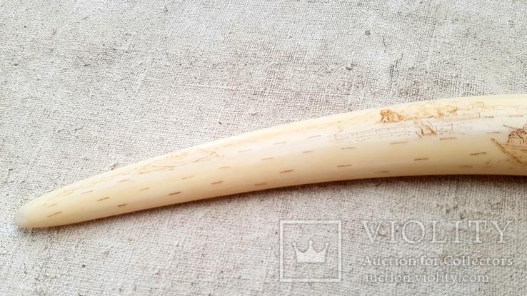 Клык моржа со сценами охоты, фото №8