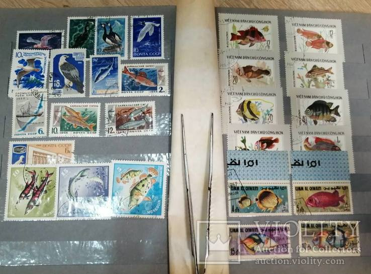 Альбом с марками Животный мир (птицы, рыбы и пр.), фото №6