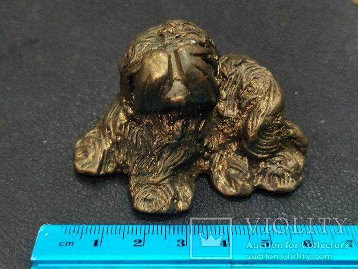 Собака Бобтейл бронза большая коллекционная миниатюра, фото №9