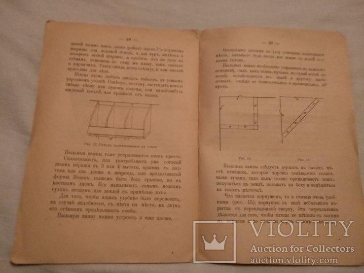1918 Птичники устройство, фото №7
