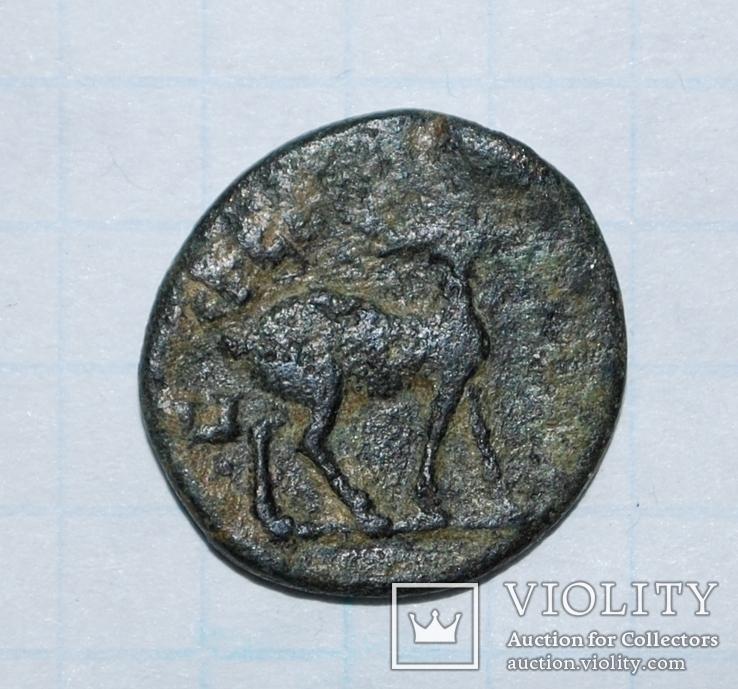 Провинциальная бронза. Вес: 2,46 г., фото №2
