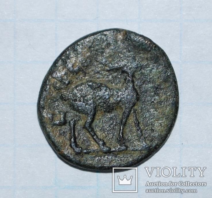 Провинциальная бронза. Вес: 2,46 г., фото №3