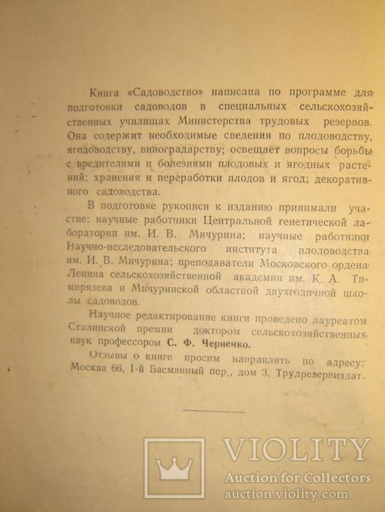 Садоводство. 1951г., фото №4