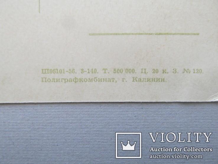 СССР, Заяц во хмелю. 1956 г., художник Игнатов, фото №11