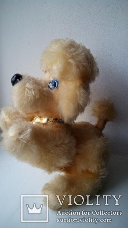 Механическая игрушка собачка лает редкость Япония, фото №8