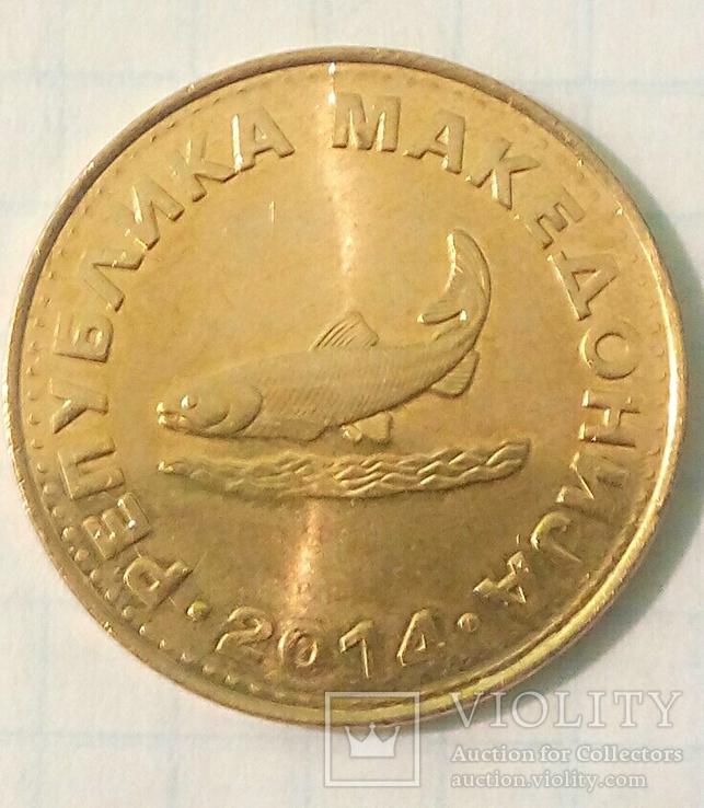 Четыре монеты Республики Северная Македония с представителями фауны., фото №10