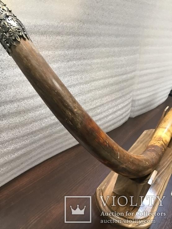 Бивень мамонта, фото №5