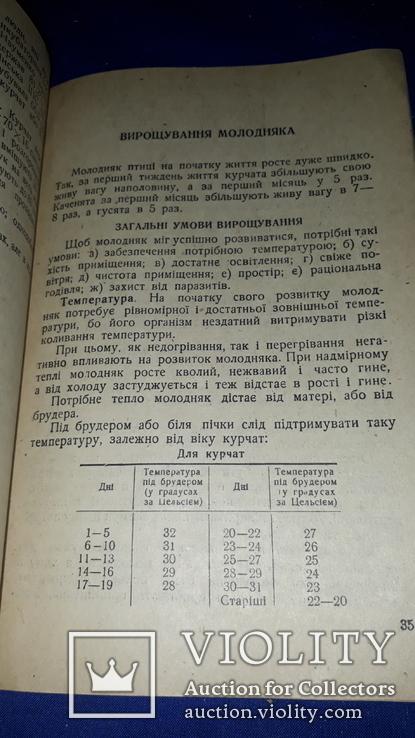 1936 Птахівництво, фото №12