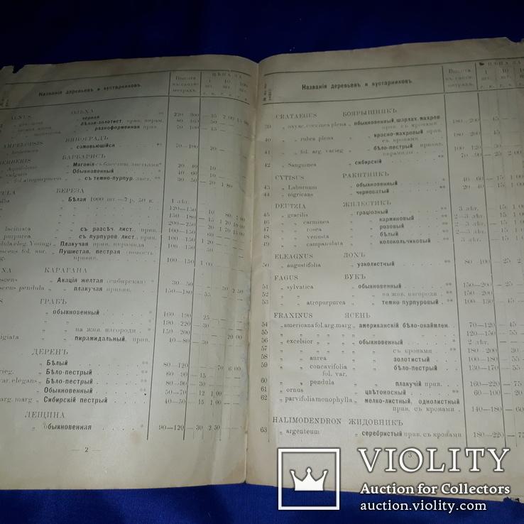 1909 Каталог деревьев Минск 25х17 см., фото №7
