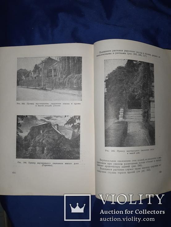 1952 Озеленение населенных мест Киев, фото №4