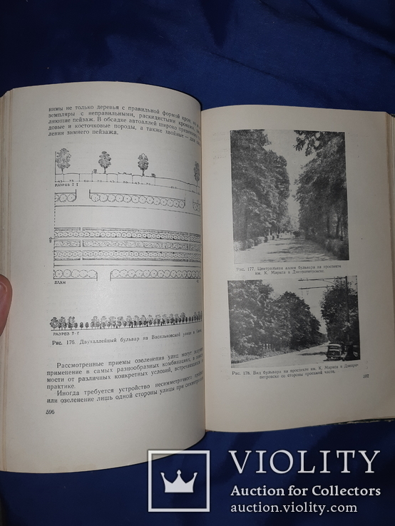 1952 Озеленение населенных мест Киев, фото №7