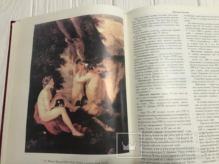 Вино, Книга о вине, фото №2