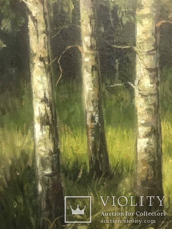Красная Шапочка в Зелёном Лесу, фото №3