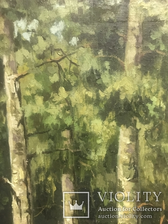 Красная Шапочка в Зелёном Лесу, фото №4