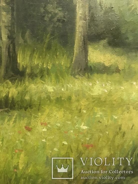 Красная Шапочка в Зелёном Лесу, фото №5
