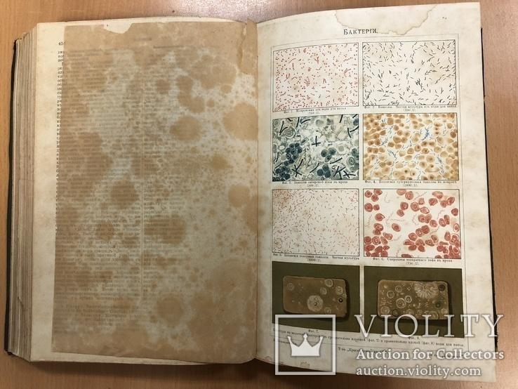 Большая энциклопедия 1900 года. 2 том. 25х17 см, фото №12