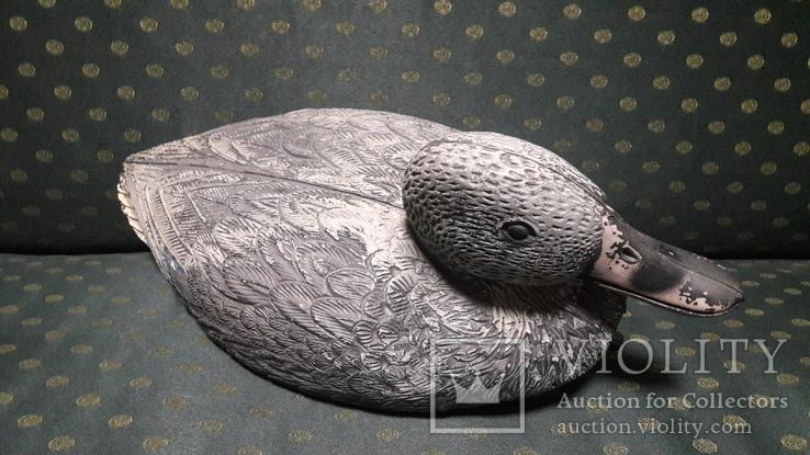Подсадная утка, селезень., фото №3
