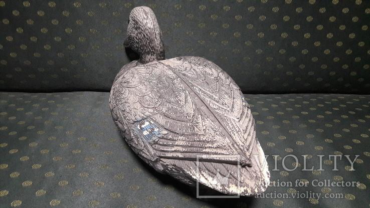 Подсадная утка, селезень., фото №6