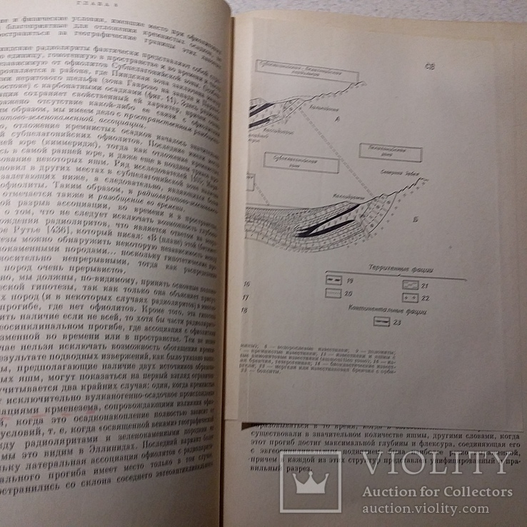 """Обуэн """"Геосинклиналии"""" 1967р., фото №5"""