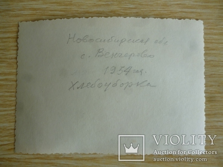 Фото Хлебоуборка 1954 год, фото №3