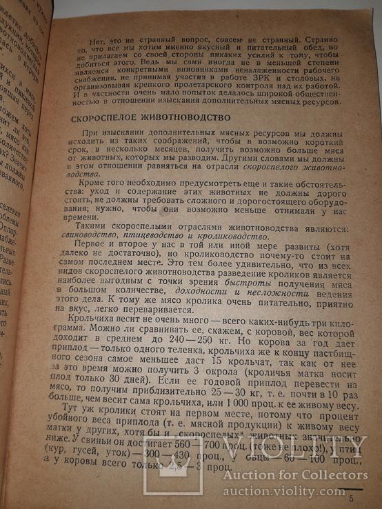 1932 Книжка о кролике, фото №4