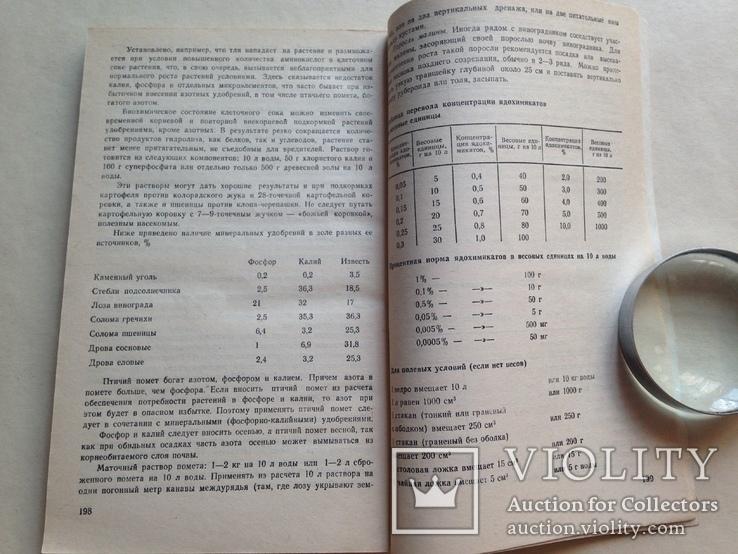 Любительское виноградарство 1988  207 с. ил., фото №9