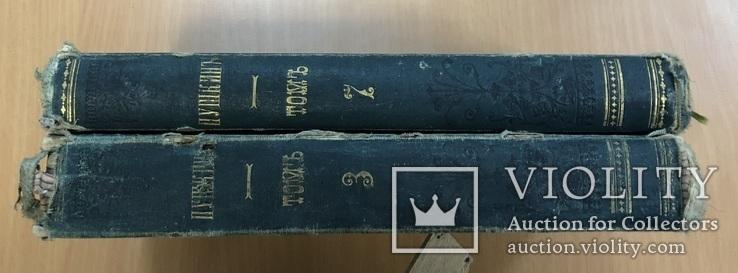 Сочинения Пушкина. Том 3 и 7. Москва 1882 года., фото №4