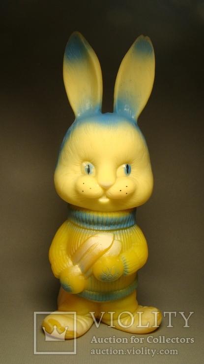 Заяц-лыжник, фото №2
