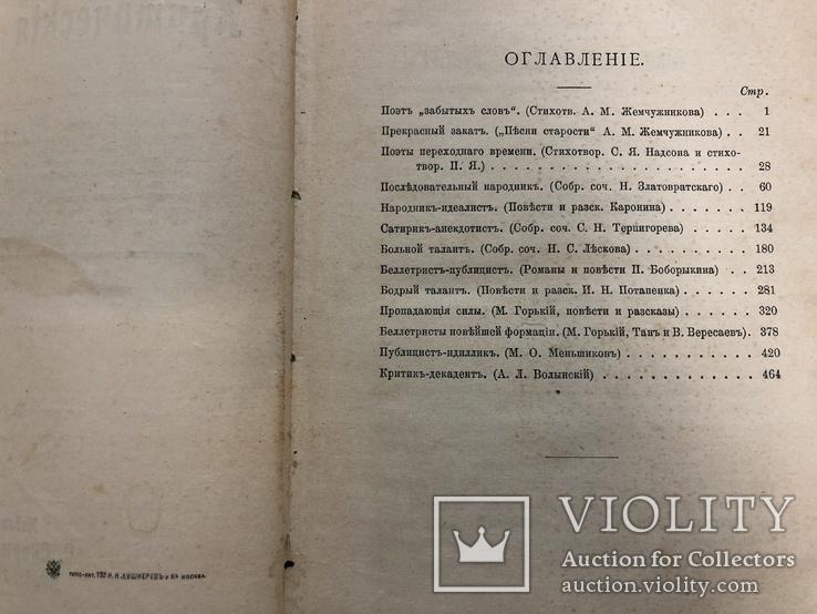 Протопопов Михаил Критические статьи. Москва 1902 год., фото №9
