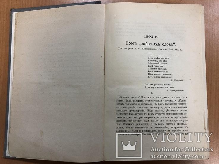 Протопопов Михаил Критические статьи. Москва 1902 год., фото №10