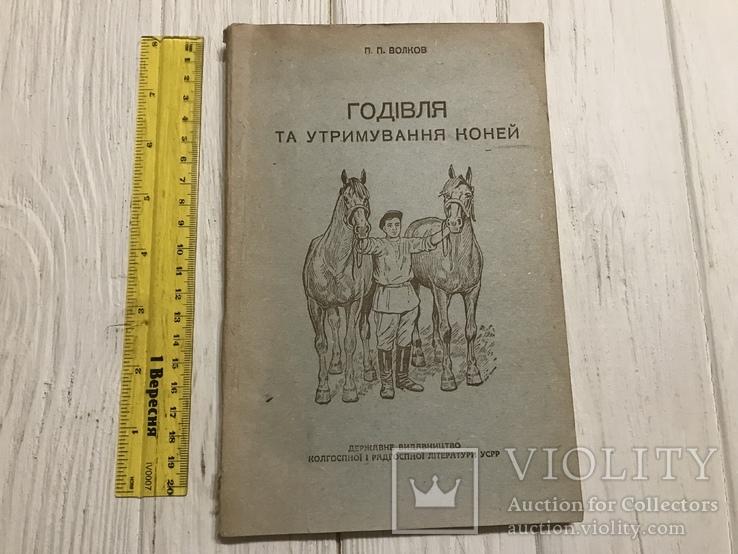 1936 Харків, Годівля та утримання коней, фото №3