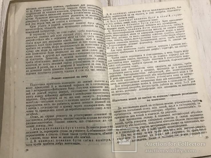 1936 Харків, Годівля та утримання коней, фото №10