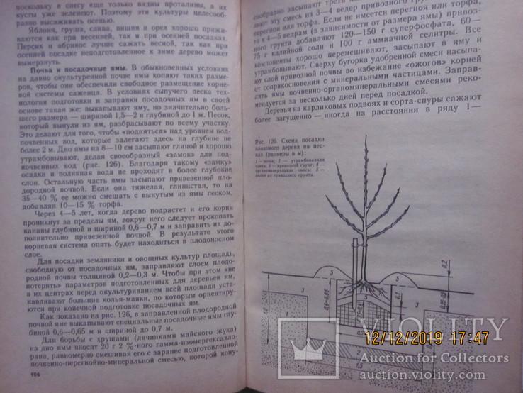 Советы садоводу-застройщику. 1984 г., фото №7