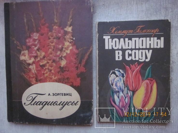 Гладиолусы и тюльпаны., фото №2
