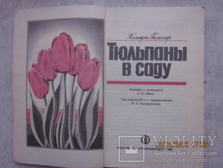 Гладиолусы и тюльпаны., фото №7
